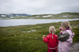 Turen fra Fagerheim til Krækkja ser jentene (Lea og Oda) Krækkja i det fjerne  - Foto: Frode Drønen