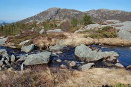 Ved Grautavatn, Sætrafjellet framme til venstre - Foto: Roald Årvik
