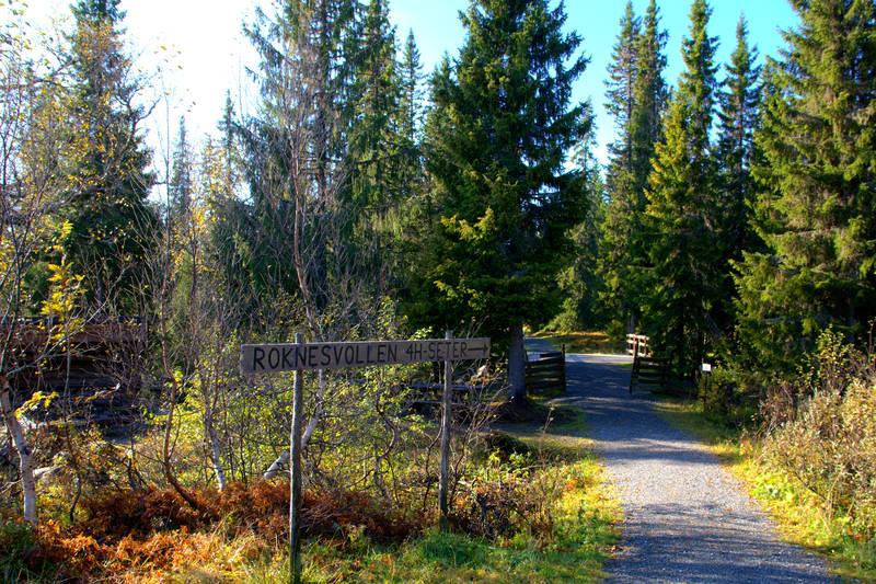 Stien inn til Roknesvollen og Branok