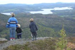 Utsikt sørover mot Nes ved Skjoldafjorden - Foto: Roald Årvik