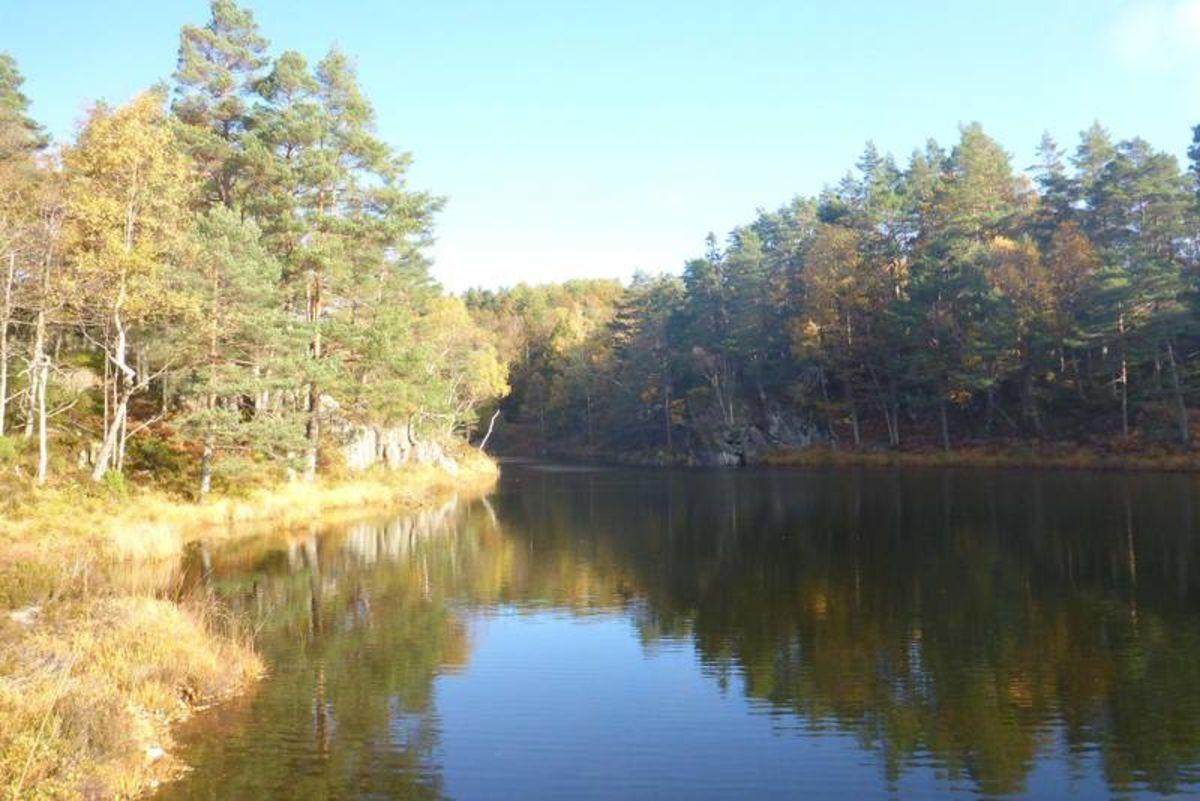 En flott oktoberdag ved Ulsvatnet.