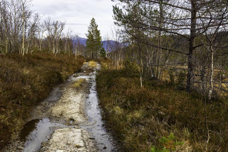 Veien opp til vatnet