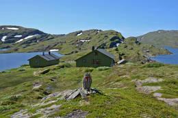Selhamar -  Foto: Bergen og Hordaland Turlag