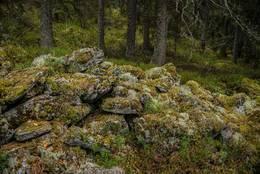 Bygdeborgsmuren på Rudskulen - Foto: Øystein Berntsen