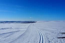 Del av løypenettet, Vadsø -  Foto: Øystein Ruud