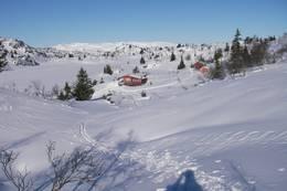 Nutevasshytta - Foto: Kjell Sandåker