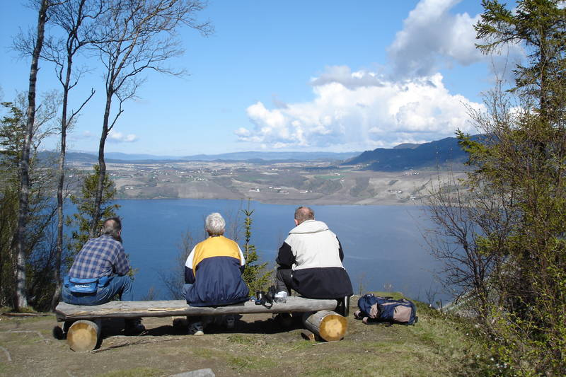 Utsikt fra Øyberget