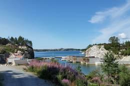 Port Steingard - Foto: JT