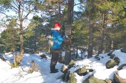 Varen en vinterdag. - Foto: Lars Jøran Sundsdal