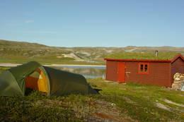 Det er mulig å telte på tunet.  - Foto: Berit Irgens