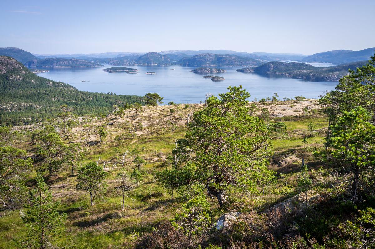 Namsenfjorden