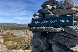 Nybufjellet -  Foto: Målfrid Toeneiet