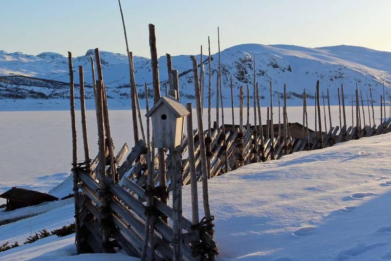 Utsikt mot Ynglesdalen