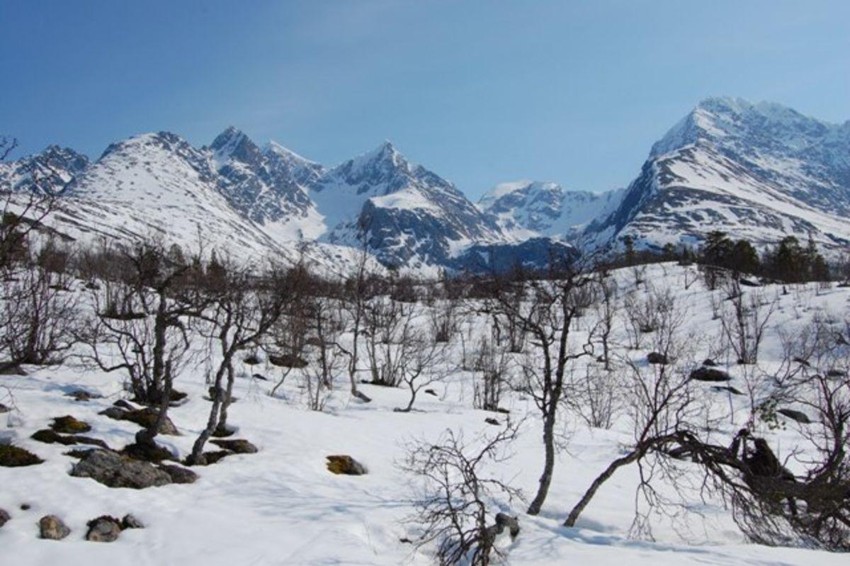 Utsikt mot Lyngsalpene rett ovenfor hytta