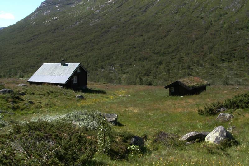 Kljåen i Hemsedal