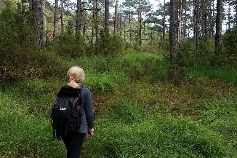 Turen går på fin skogssti den siste biten.