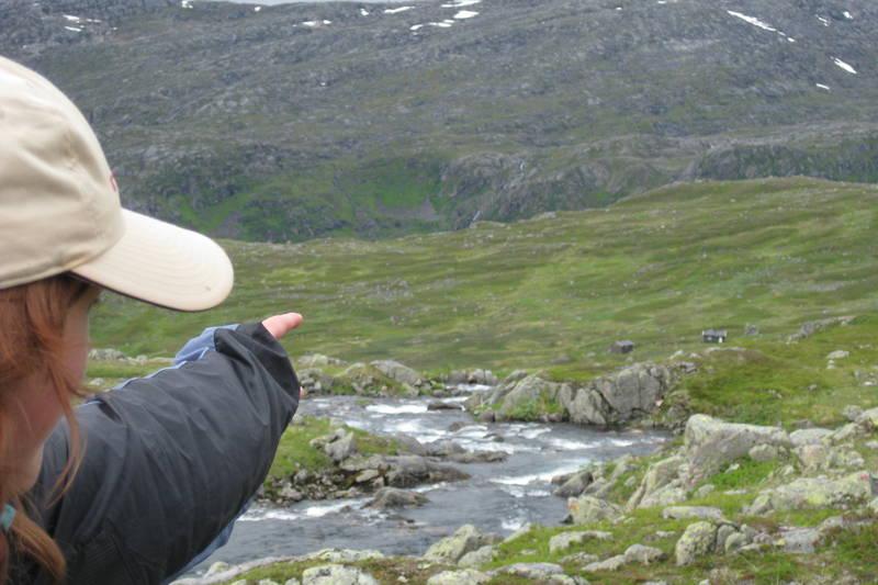 Første glimt av Toralfsbu på Hinnøya, Troms etter en flott tur opp fra Fiskefjorden. Juli 2010.