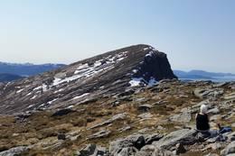 Kaluvekeipen, 769 moh ligg rett sør for Dyrelifjellet. - Foto: Arnfrid Bergheim