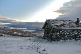 Ulvelilægeret høsten 2009. Da jeg våknet hadde den første vinteren lagt sitt hvite slør over viddene i løpet av natten. Fantastisk opplevelse. - Foto: Marius Adler Dahl