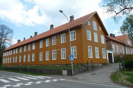 Blåkragen - Foto: Ukjent