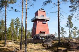 Haukenestårnet -  Foto: Fred Larsen