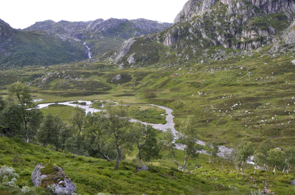 Ned mot Blåfjellenden og Leitesåna