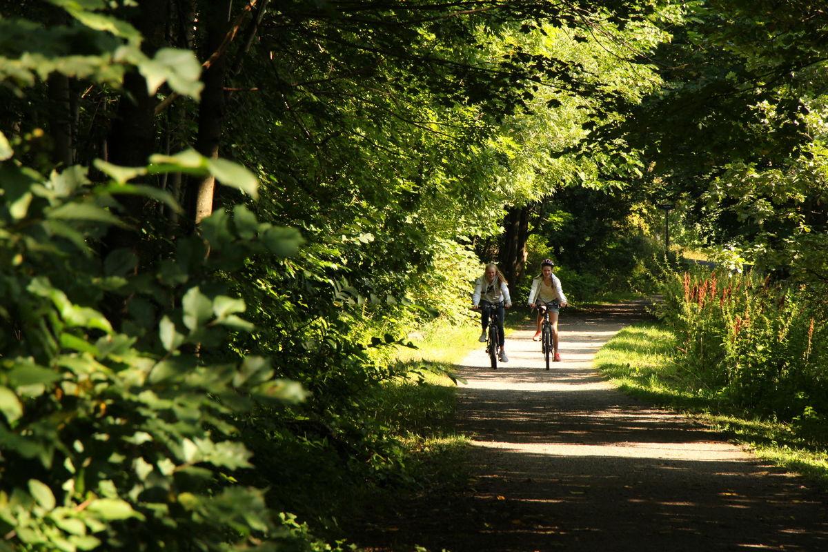 Partiet bak Ullevål sykehus er kanskje en av Oslos fineste sykkelstrekk