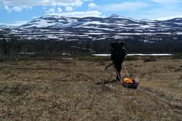 På vei over Stormyra, med nydelig utsikt inn mot Rapestinden fra venstre, Draakonen og Rainesklumpen lengst bak. -  Foto: Mari Valen Høihjelle