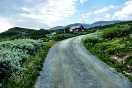På bilvei oppover et stykke i begynnelsen - Foto: Erik Haaland