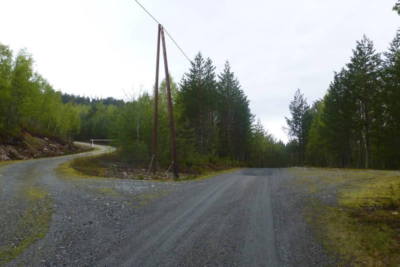 Utgangspunkt for turen til Sindresetra Alt. 1 går opp skogsbilveien. Gode parkeringsmuligheiter.