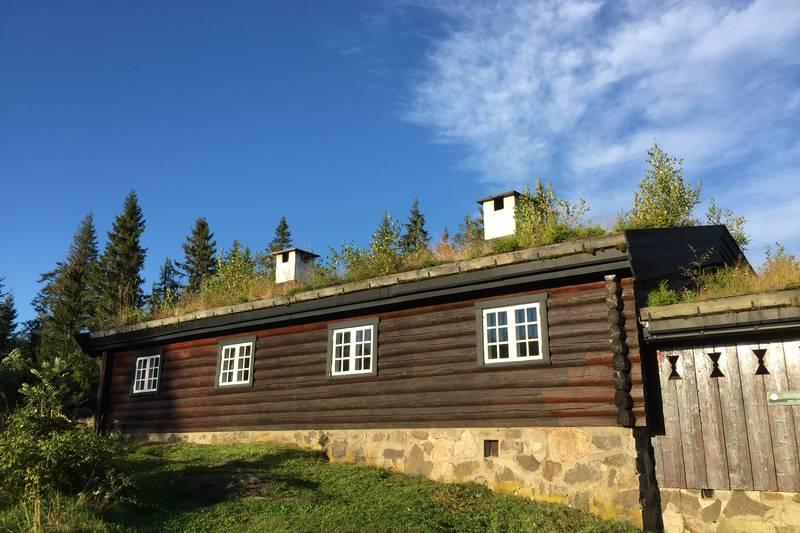 Stor hytte med plass til mange