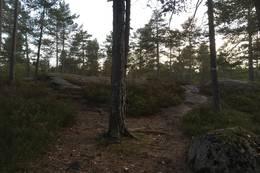 På vei ned, hold til venstre her. - Foto: Einar Vestnes