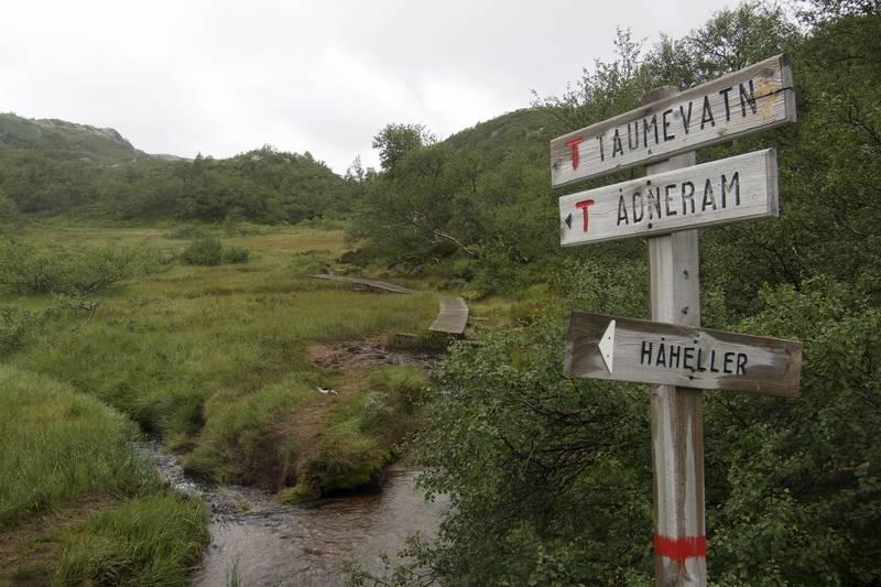 Siste DNT-skiltet på Langfjella på langs.