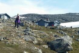 Harehopphytta -  Foto: Gudrun Nilsen