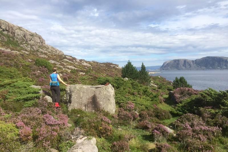 På veg mot Stokksneset på delvis godt synleg hjortetråkk.