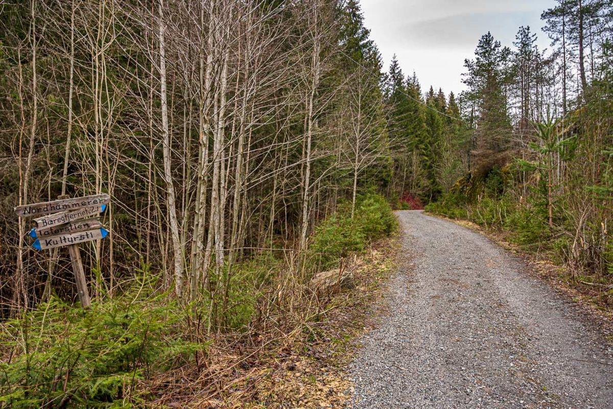 Grusveien går opp i skogen