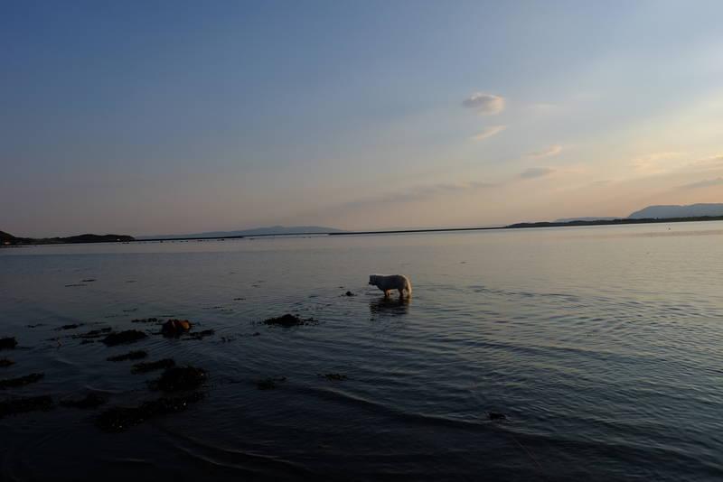 Vakker kveldsstund i Ryggafjæra.