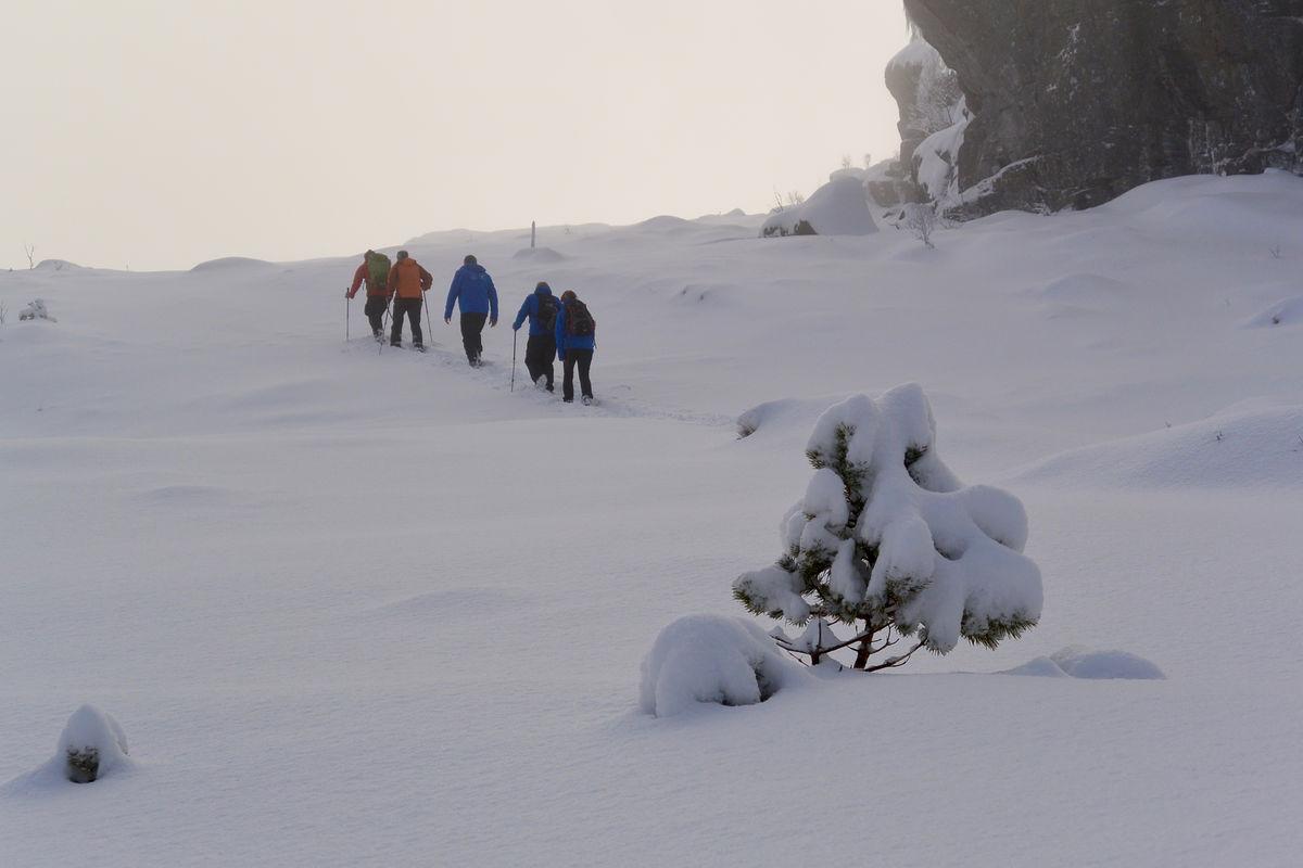 Turen til Preikestolen er vanligvis dekket av snø om vinteren. Brodder, gode sko og vinterbekledning er nødvendig.