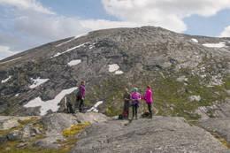 På en liten topp nedenfor Sjuendevasstinden -  Foto: Kjell Fredriksen
