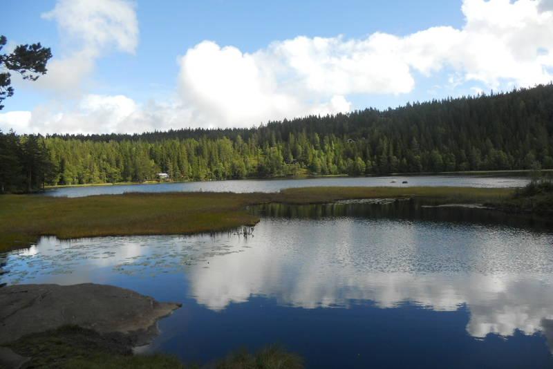 Hvaldsammen ligger 525 m.o.h. På varme soldager er det fint å bade her.