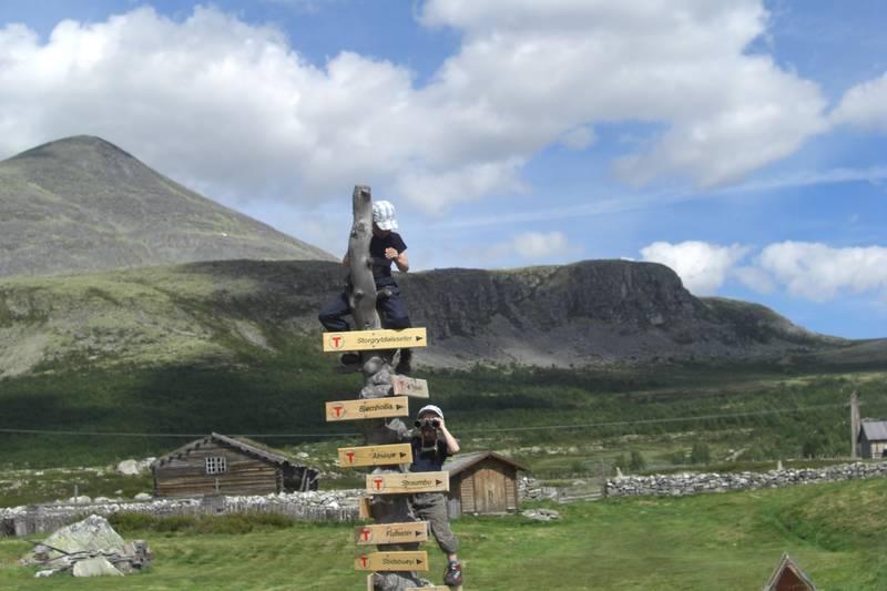 Bildet er tatt på tunet ved Breisjøseter i Alvdal Vestfjell. Eliot (med kikert) og storebror Johan, begge fra Sunnmøre, orienterer seg i nye og spennende  omgivelser. Hvilken vei fører til kildene?