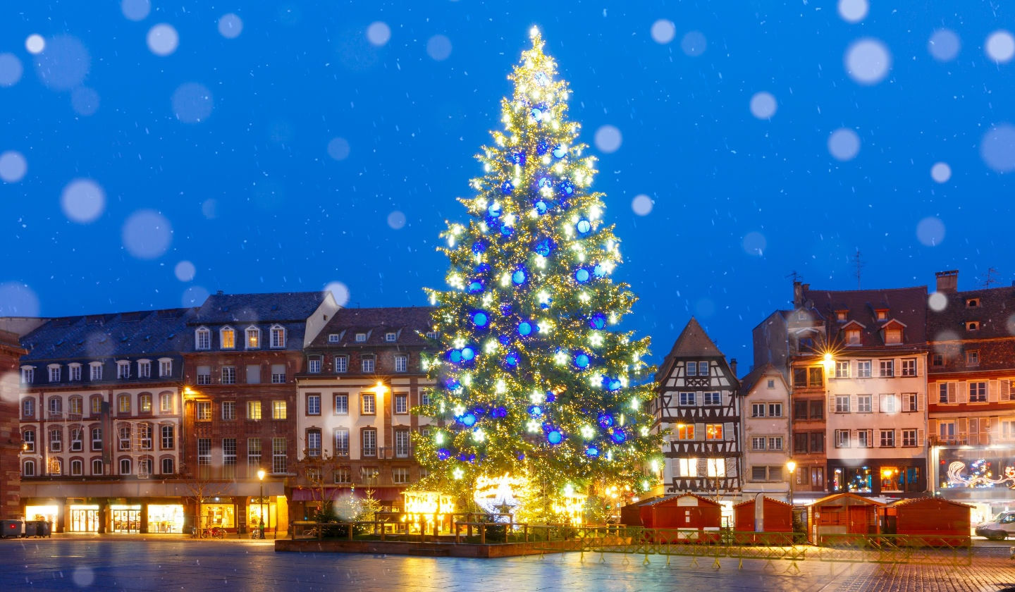 Best Christmas Trees.8 Of The Best Christmas Trees From Around The World Just