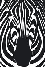 Zebra Products