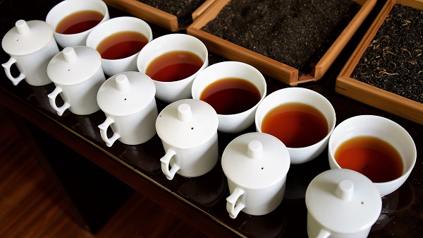 Dian Hong Tea Tasting Session