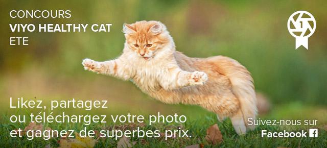 Concours viyo healthy cat