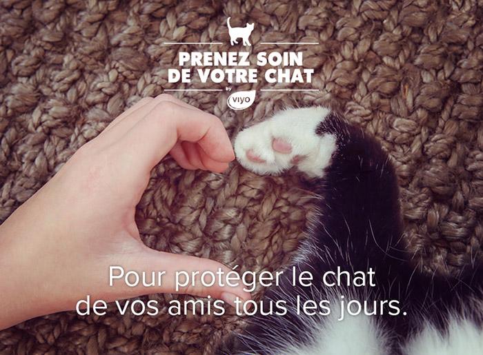 Pour protéger le chat de vos amis tous les jours