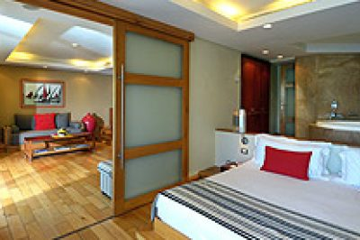 Senior Suite (110 Sq Mtr)