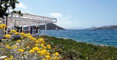 D-Resort Gocek Beach Grass Area