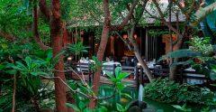 Asia Gardens Hr 76