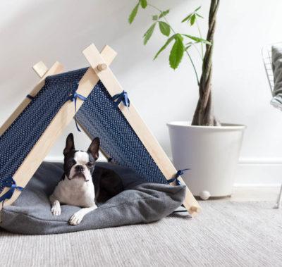 Superskaparna – Hundkoja | Dnilva